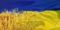 Як у Чигирині відзначатимуть День Незалежності України? (програма)